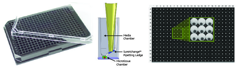GravityTRAP 384 Microtissue Platform