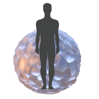 Human liver spheroid model for tox testing